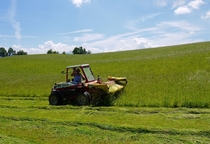 Mowing hay near Luzern Switzerland