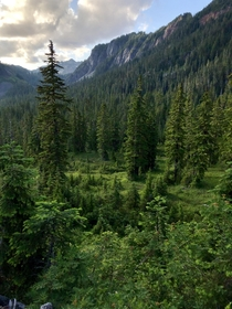 Mt Baker-Snoqualmie National Forest WA