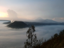 Mt Bromo Indonesia - Taken on Feb    days after eruption