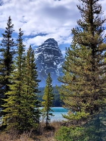 Mt Chephran overlooking Waterfowl Lake BANFF Alberta
