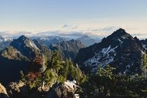 Mt Ellinor summit  Olympic National Park  WA USA