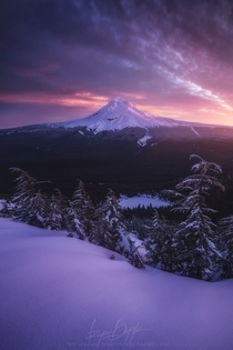 Mt Hood from the top of TDH Mountain