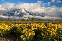 Mt Moran in Grand Teton National Park WY  by Zachary Gertsch