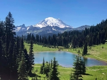 Mt Rainier and Lake Tipsoo WA Just drove Highway  to get there so nothing extreme happened to get this  x  OC