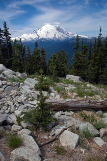 Mt Rainier WA from Crystal Mt