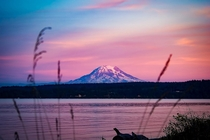 Mt Ranier Pink Summer Sunset