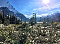 Mt Robson left on return from Snowbird Pass Heaven on earth