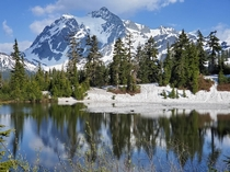Mt Shuksan as seen from Picture lake Mt Baker National Forest Washington State  x