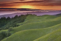Mt Tamalpais Marin County California - Patrick Smith