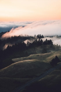 Mt Tamalpais overtaken by fog at sunset Marin County California