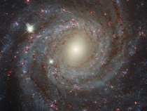 Multi-color closeup picture of the face-on spiral galaxy NGC  shot by the Hubble Space Telescope showing remarkable details from near infrared to ultraviolet wavelengths Yellowish light  old stars Blueish light  young star clusters Reddish light  star for