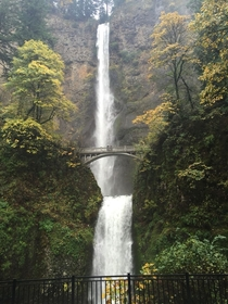 Multnomah falls outside of Portland OR along the Columbia River OC  x
