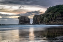 Muriwai Beach New Zealand