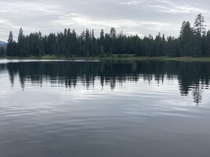 Muskrat lake Idaho x