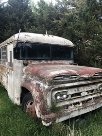 My aunt and uncle have this bus on their property