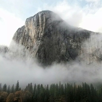 My buddy took this stunning photograph of El Cap with his phone yesterday Oh so perfect  by Mikey Bui