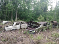 My Dad abandoned these cars  years ago