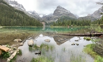 My favorite Canadian Lake OHara