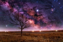 My favorite tree to photograph Taken at the Ramah State Wildlife Area east of Colorado Springs CO The Milky Way was tracked and then I blended it with the foreground If interested in equipment settings etc Please ask me any questions and Ill be happy to a