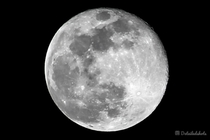 My first image i took of the full moon I only have a mm lens so this is the best i could get What do you guys think