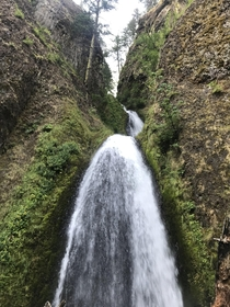 My hike at Wahkeena Falls Oregon