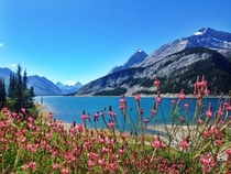 My idea of paradise Spray Lakes Kananaskis Country Alberta