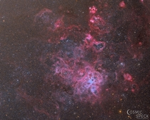 My image of the Tarantula Nebula - the most active star forming region in the night in true color
