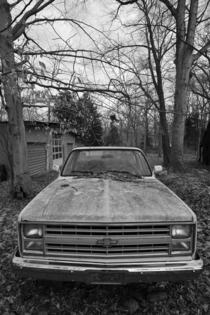 My late grandfathers old abandoned pickup truck