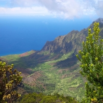 My parents are traveling in Kauai Hawaii--I get emails with pictures like this to start my work day