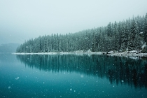 My quietest photo ever snowfall in Banff at Moraine Lake  nickfjord