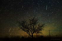 My view of the Geminid Meteor Shower