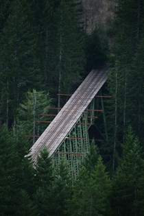 My view of Vance Creek Trestle today in Shelton Washington