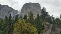 My Yosemite pass ends todaygoodbye El Cap