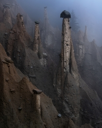 Mysterious creatures aka Valle del Viagra Dolomites South Tyrol