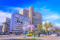 Nairobi Kenya CBD with the jacaranda trees in full bloom
