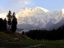 Nanga Parbat from Fairy meadows Pakistan