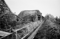 Nara Dreamland Japan April  Kodak TriX Contax T