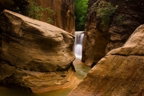 Narrows Waterfall Zion Utah