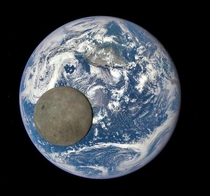 NASA Satellite Captures the Far Side of the Moon Transiting the Earth From  Million Miles Away