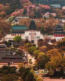 National Folk Museum complex inside the wooded grounds of Gyeongbok Palace downtown Seoul South Korea
