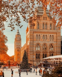 Natural History Museum London UK
