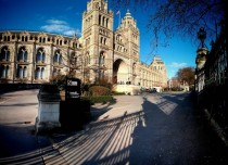 Natural History Museum London x