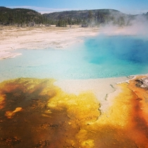 Natural hot springs at Yellowstone National Park