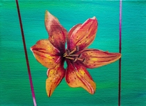 Nature Blossom Tiger Lily i painted back in   x  cm x