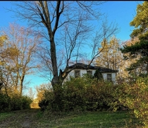 Nature is Reclaiming this Abandoned Farmhouse in Ohio