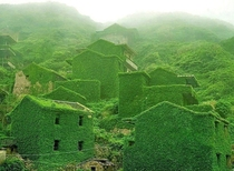 Nature overruns this abandoned Chinese village