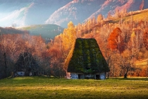 Nature reclaiming abandoned cottages in the Transylvanian mountains  Adrian Munteanu