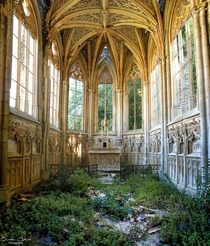 Nature Reclaiming an Abandoned French Church