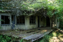 Nature reclaiming an abandoned house in Seabeck WA