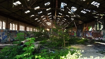 Nature reclaims an abandoned warehouse in the UK countryside